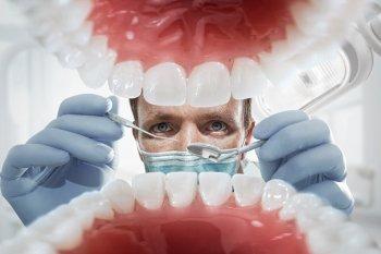 plaque dentist edmonds